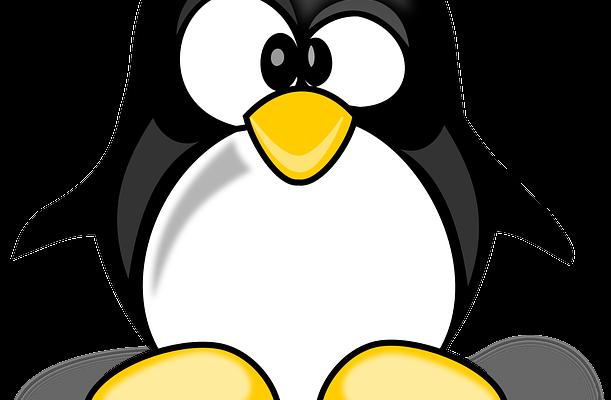 רעידת האדמה בקידום האורגני – עדכון פינגווין 4 ועדכון אופוסום